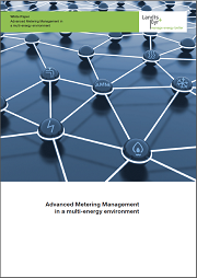 Advanced Metering Management in a Multi-energy Environment