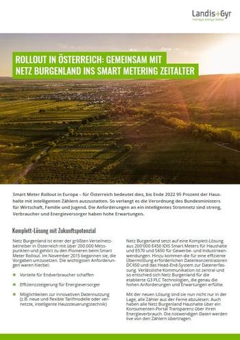 Case Study - Netz Burgenland