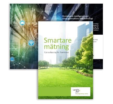 se-smart-meter-guide.jpg