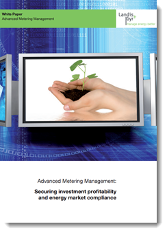 Advanced Metering Management: Securing Investment Profitability and Energy Market Compliance