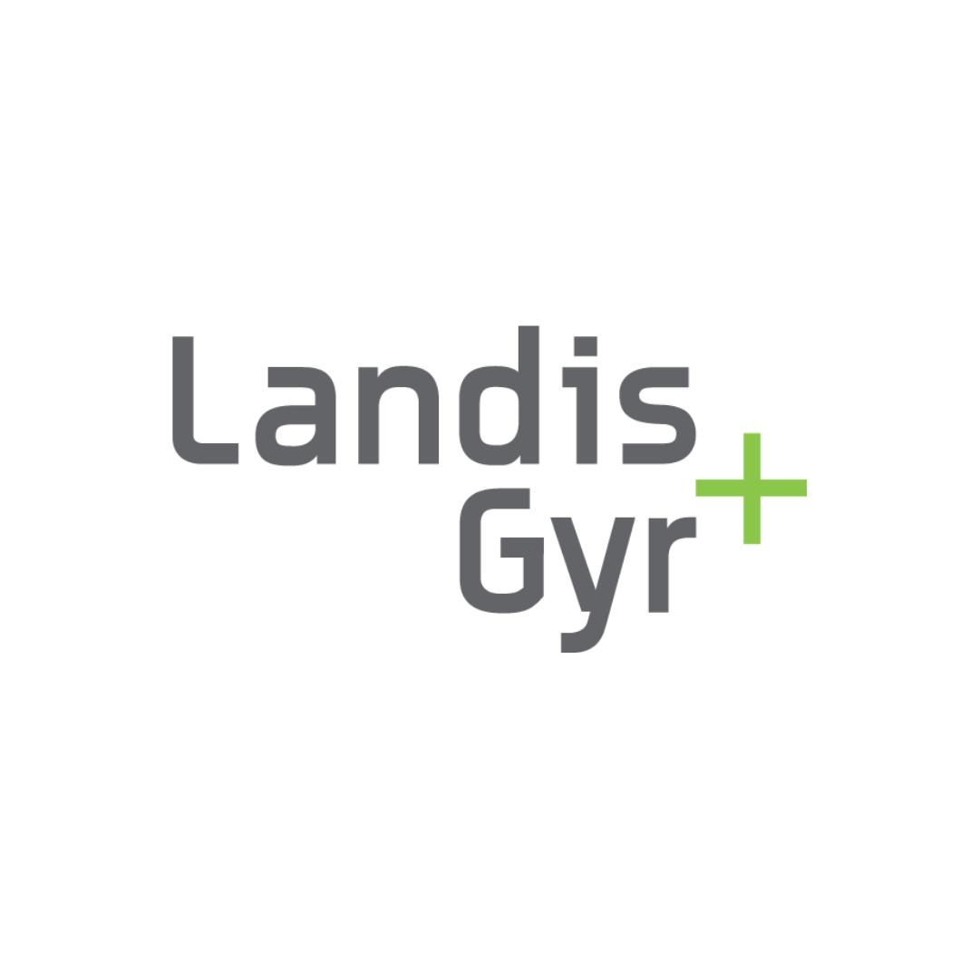 the Landis+Gyr team