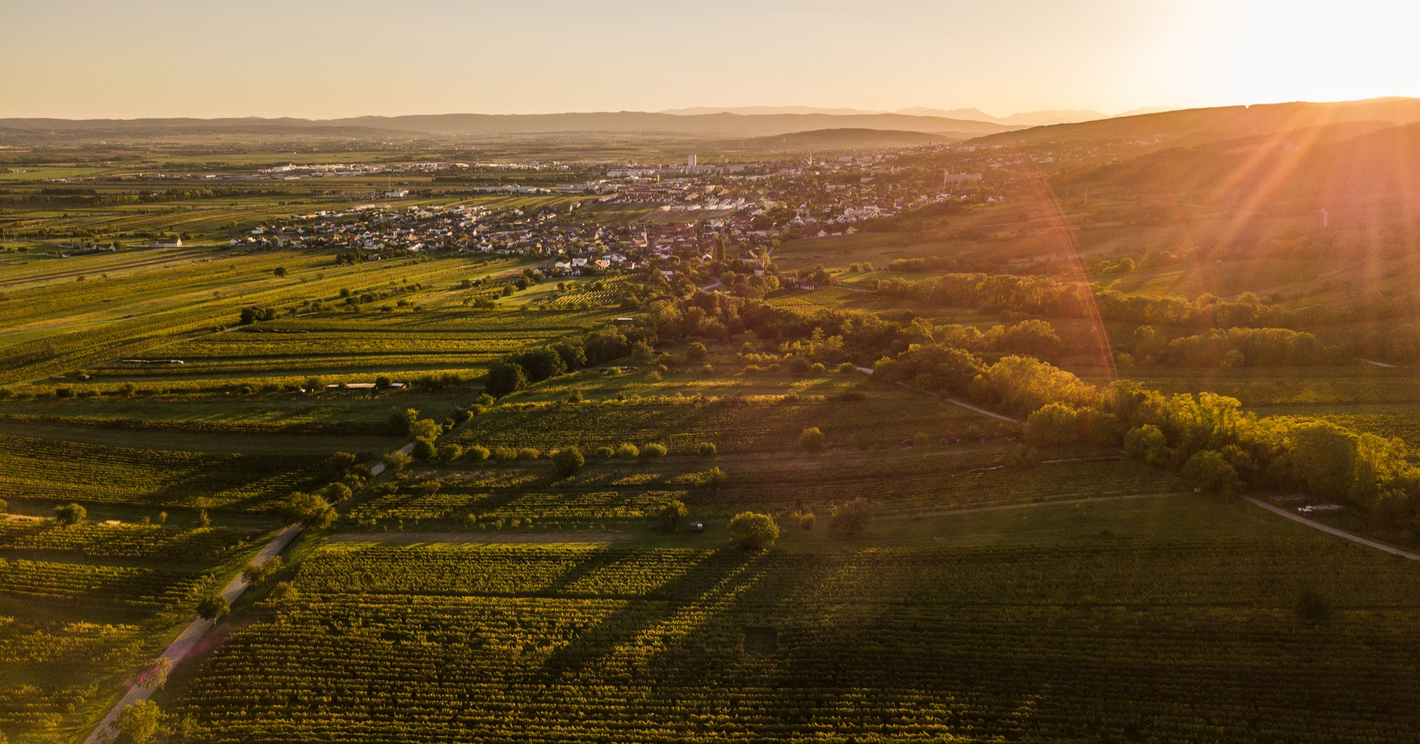 Smart Burgenland: Successful rollout in Austria