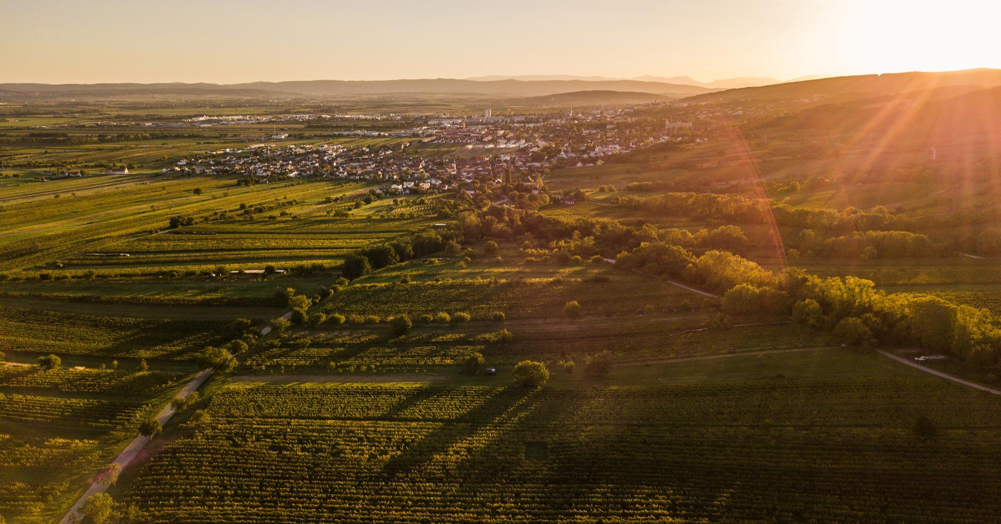 Smartes Burgenland: erfolgreicher Rollout in Österreich